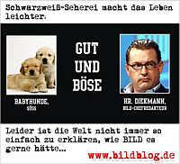 Werbekarte für www.Bildblog.de