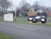 Stroh-Kuh zur 72-Stunden-Aktion der KLJB Wippingen