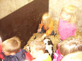 Besuch im Kuhstall von Tangen