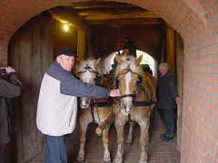 Zum Video von der Ausfahrt des Pferdefuhrwerks