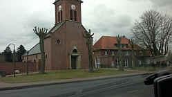 Enthauptete Bäume bei der Kirche