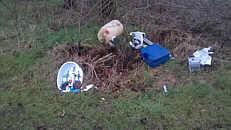 Müll an der Wippinger Dever