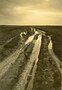 Moorweg im Emsland