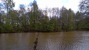 Seitenkanal östliches Widerlager bei Neudörpen