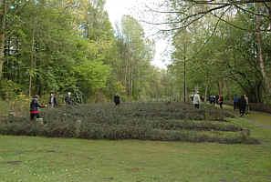 Teilnehmer legen Blumen auf die Gräber