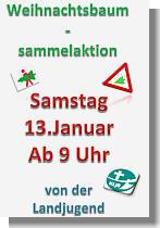 Flyer zur Weihnachtsbaumsammelaktion