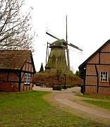 Holländische Durchfahrtsmühle in Wippingen