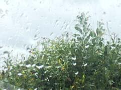 Regen an der Glasscheibe