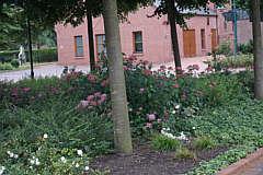Blumenbeete auf den Kirchengelände
