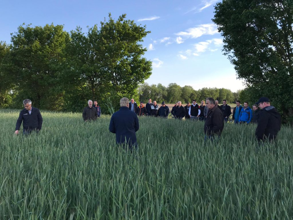 Feldtag des Landvolks Wippingen 15.05.2019