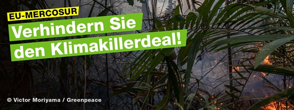 Zur Greenpeace-Homepage