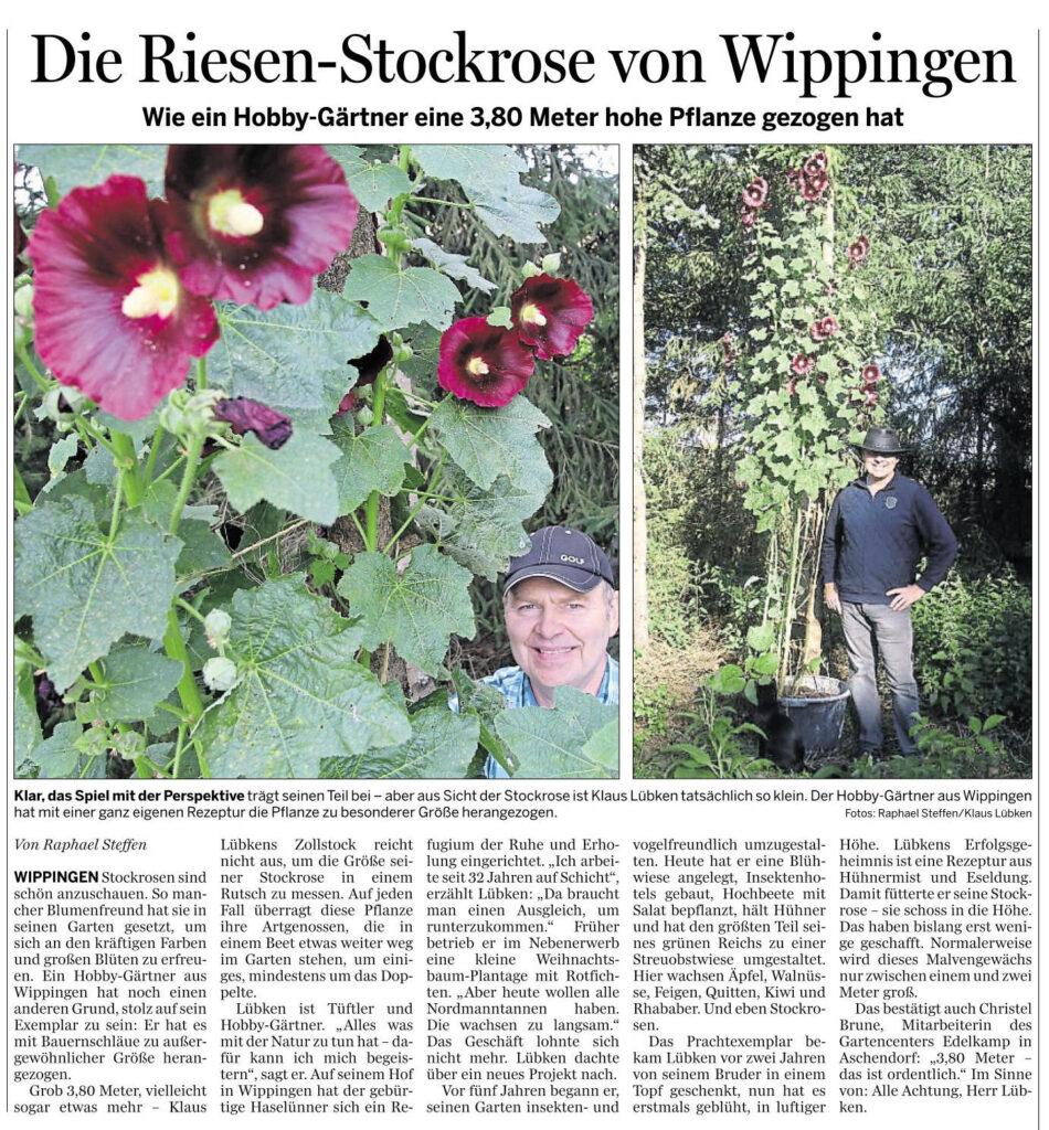 Ems-Zeitung vom 12.08.2020