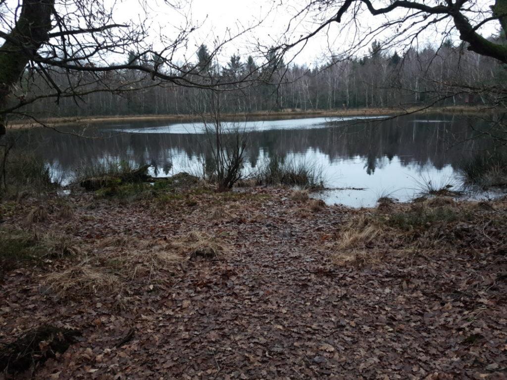 Silbersee im Lahner Nordholz