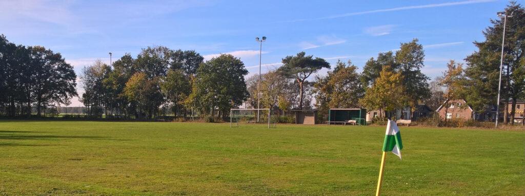 Baumreihe am Sportplatz im November 2018